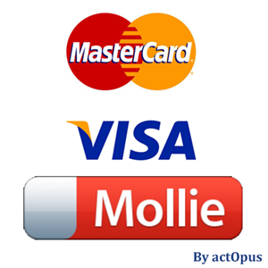0009172_mollie-and-qantani-compatible-creditcard-payment-plug-in-for-nopcommerce_300